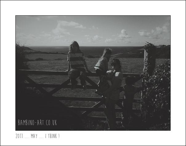 2011_trebartwith_strand