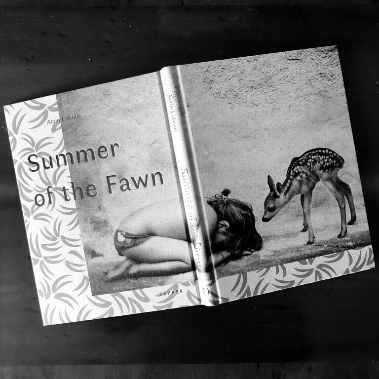 MA inspiration : Alain Laboile summer of the fawn